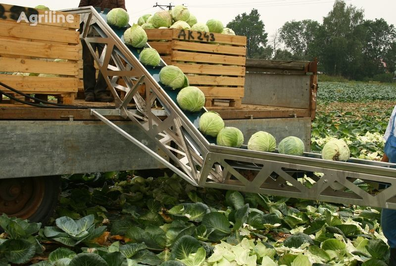GRIMME Transporter dlya uborki kapusty cosechadora de patatas nueva