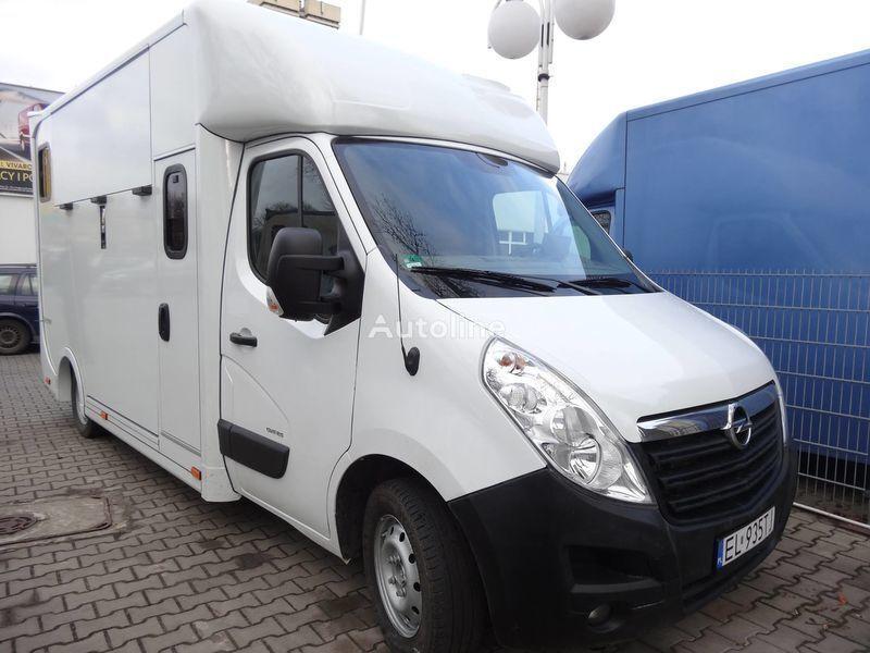 OPEL Movano transporte de caballos