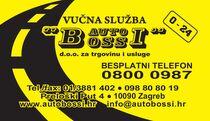Auto Bossi