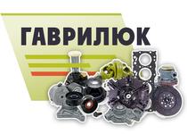 FOP Gavrilyuk