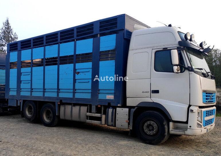 VOLVO FH 540 For bovines - Do bydla camión para transporte de ganado