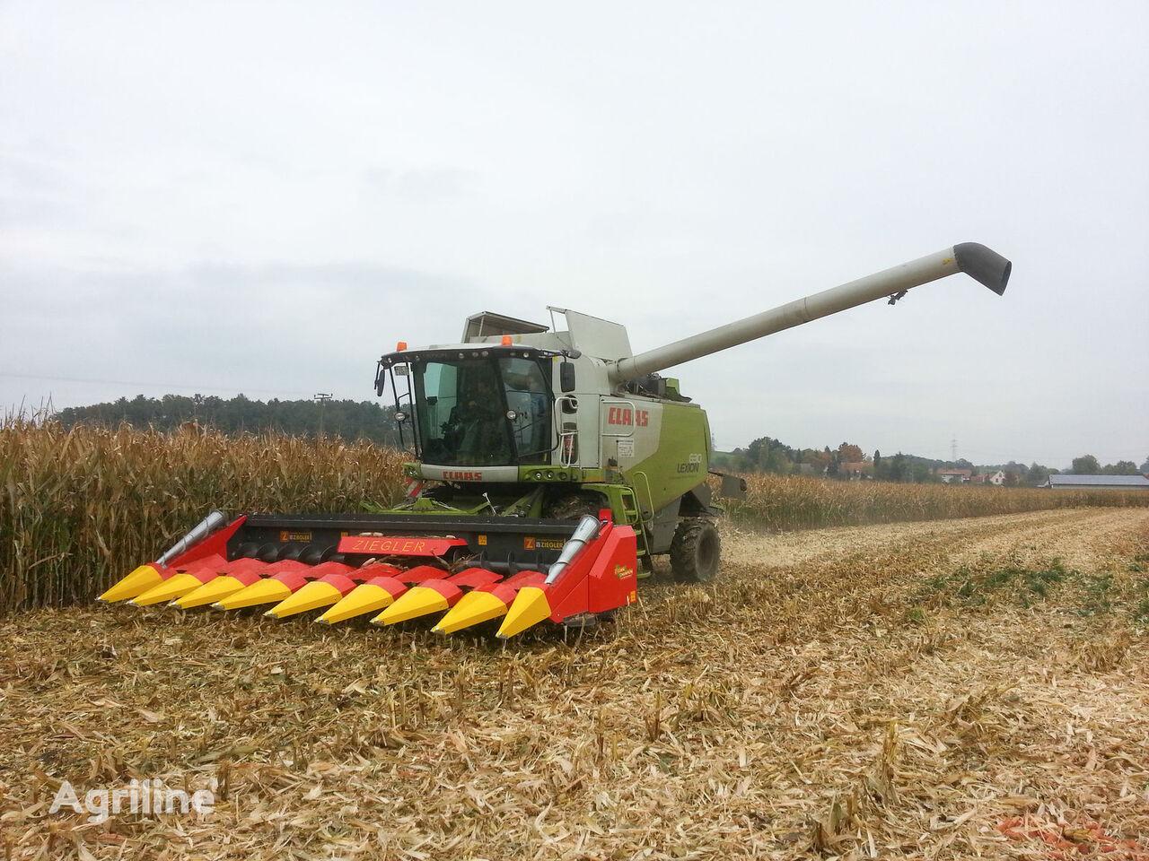 cabezal de maíz ZIEGLER CORN CHAMPION 8R/70 nuevo