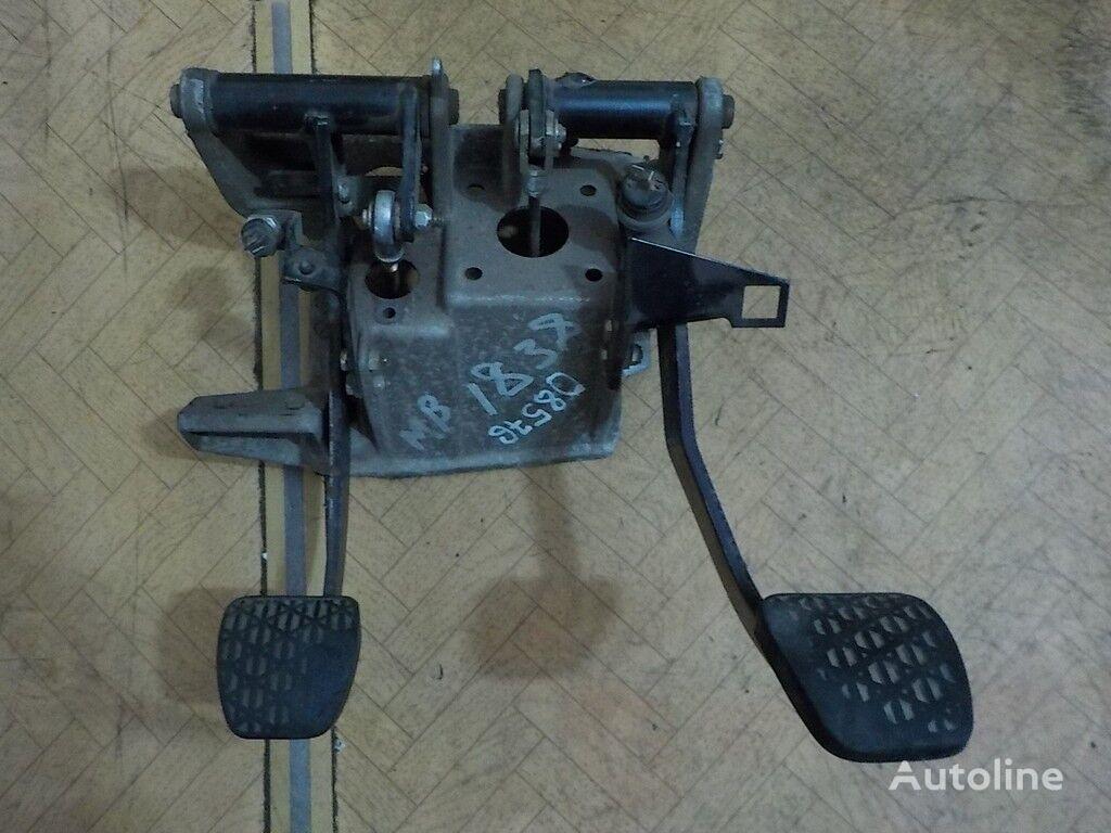 pepelnica cuadro de instrumentos para DAF camión