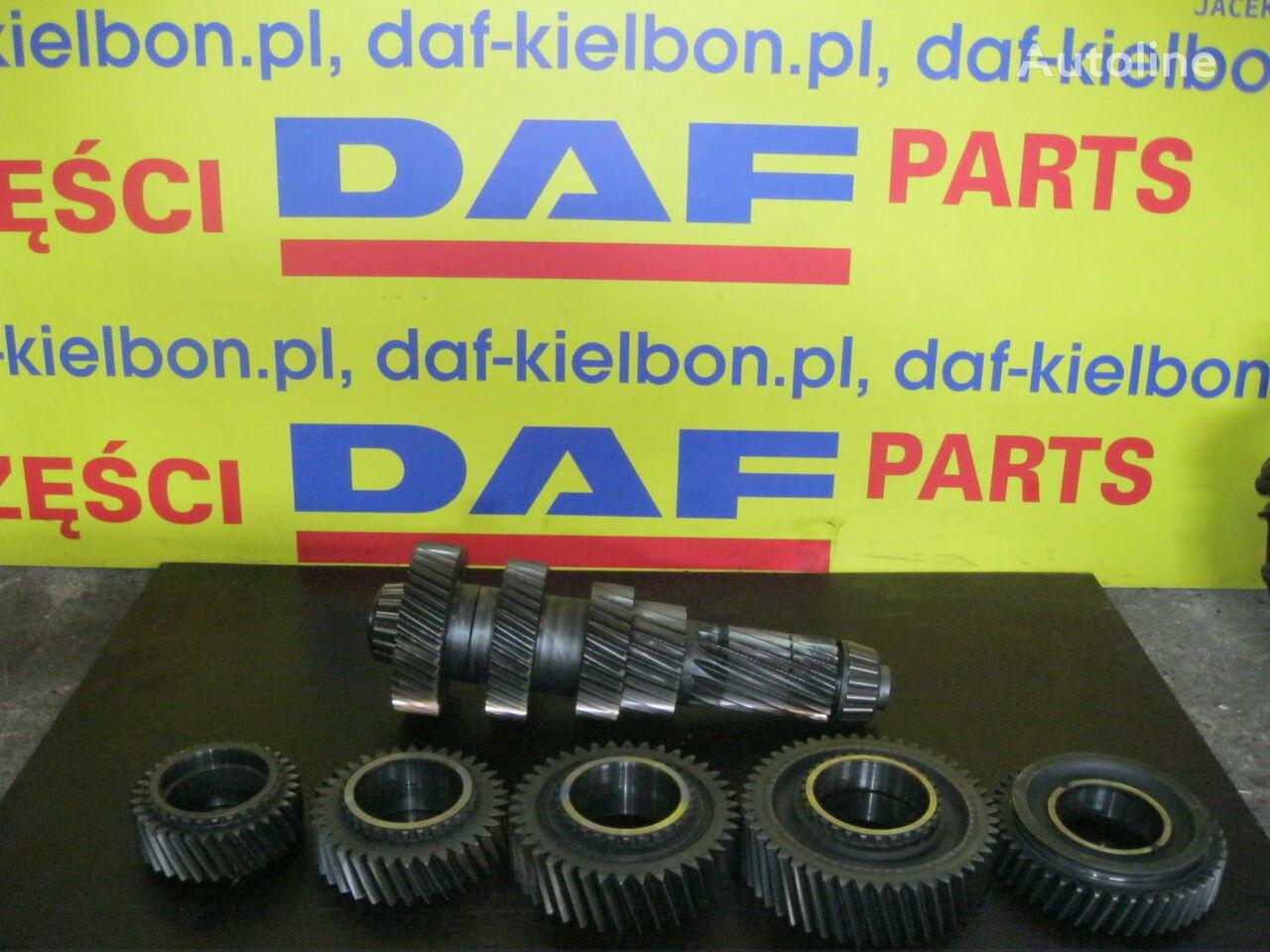KOŁO ZĘBATE WAŁEK POŚREDNI ZF otra pieza de transmisión para DAF XF 105 tractora