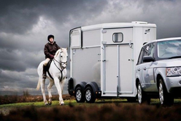 IFOR Williams HB511 remolque de caballos