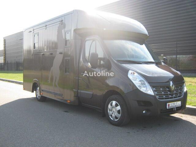 RENAULT Master 170 Dci Paardenvrachtwagen B rijbewijs transportador de caballos